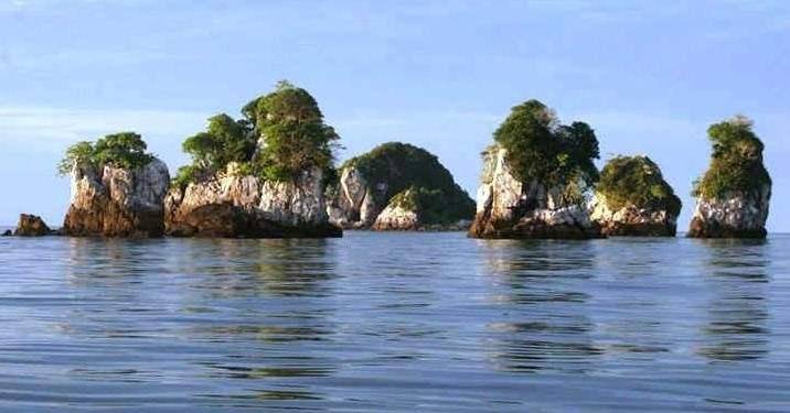 Susunan Karang di Sekitar Perairan Pulau Jemur