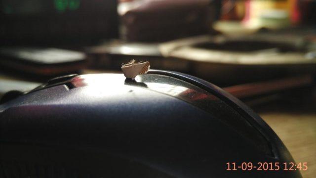 blur background xiaomi